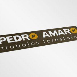 Logotipo Pedro Amaro